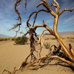 Perché perdere un giorno nella Death Valley?