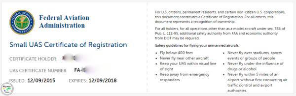 volare con il drone in america